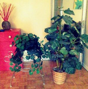 Artificial Plants ($10, $20)