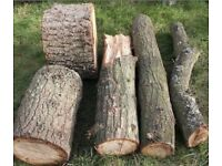 Logs - Collected