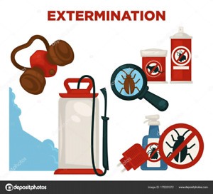 Les expert de extermination a prix imbattable