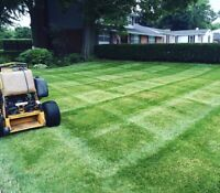 Olympic hopeful wants to take care of your lawn