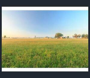 72 acre rural property middle of vineyards - Pokolbin Pokolbin Cessnock Area Preview