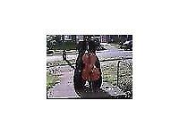 Student 4/4 Size Cello