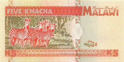 Malawi  5  Kwacha  1.6.1995  Series  AN  Uncirculated Banknote RRAf