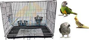 PARROT CARRIER MEDIUM BIRD COCKATIEL AMAZON TRANSPORT TRAVEL  HOLIDAY CAGE 2607