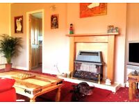 Bright Double Room in Shared Flat in Gilmerton (Near Infirmary) w/ Garden & Dog £440/mth ALL INCLUSV