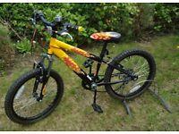 UNISEX CHILDRENS / TEENAGERS VARIOUS FREESTYLE BMX BIKES / MOUNTAIN BIKE PRICED INDIVIDUALLY