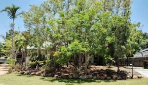 5 Br/2Bath House for sale with granny flat in Douglas, Townsville