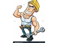 Good labourer looking for work, demolition, painting, trenching, garden clearance