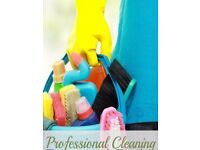 Lora's house cleaning - housekeeping and domestic cleaning. Private cleaning services.