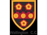 South London / Surrey Cricket Club looking for Players
