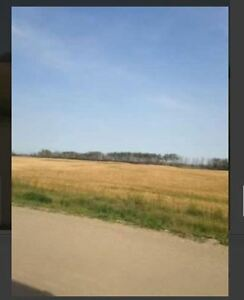 FARM LAND FOR SALE / RM OF PRINCE ALBERT SASKATCHEWAN