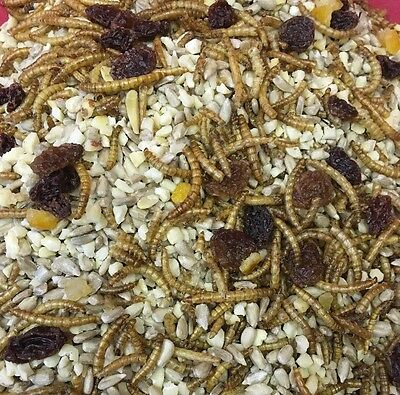 Hedgehog Mix 200g Mealworms Fruit Hearts Nuts Hamsters Rat Mice Wild Garden Bird