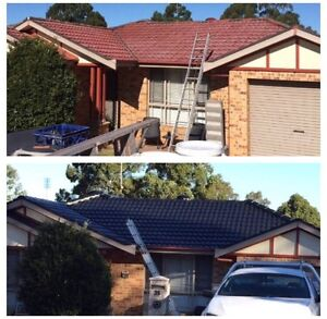 Roof painting and cleaning, special $$$ Prospect Blacktown Area Preview