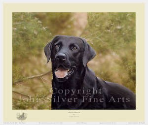 BLACK-LAB-PORTRAIT-BLACK-WATCH-SIGNED-LTD-ED-PRINT-by-JOHN-SILVER
