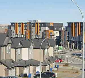 KINCORA NW 2 BEDROOM BRAND NEW CONCRET CONDO NEVER BEEN LIVE IN