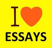 Business, Nursing, Assignments, Essays, Essay, Political Science