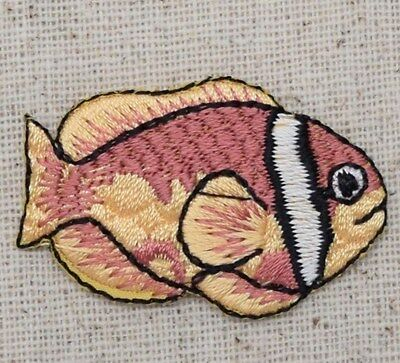 Pink Anemone Clown Fish Tropical/Clownfish - Iron on Applique/Embroidered - Clownfish Anemone