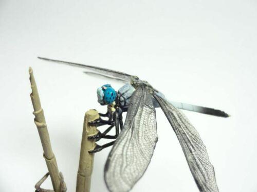 Yujin Kaiyodo Common Skimmer Dragonfly Bug Insect PVC Figure Figurine Model Rare