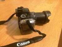 Canon SX20 IS Bridge Camera, 560 mm zoom
