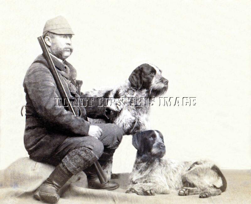 ANTIQUE REPRO 8X10 c.1890 PHOTO HUNTER GERMAN DRAHTHAAR STICHELHARR POINTER DOG