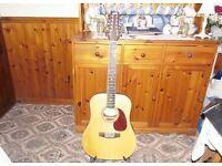 12 string ashton guitar