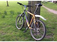 City bike with Surly CroMo fork and upgrades, size L/XL