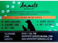 Animate pet services - dog walking, pet sitting, pet taxi, horse care...