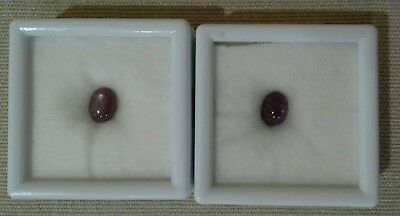 Lot of 2 Star Ruby Oval Cabochons 2.25ct, 8x6mm (lot4909)