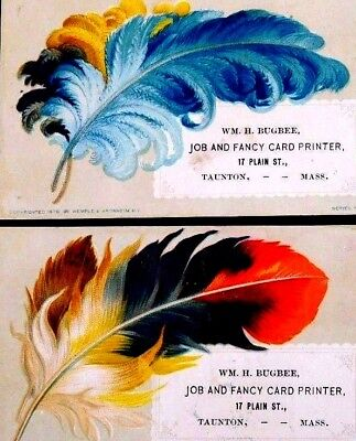 Fab Bird's Feathers Wm, H Bugbee Job & Fancy Card Printer Lot of 3 Cards F2