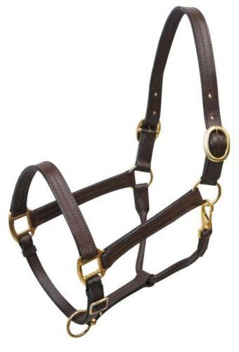 Large HORSE Size LEATHER Dark BROWN Adjustable HALTER with BRASS Hardware