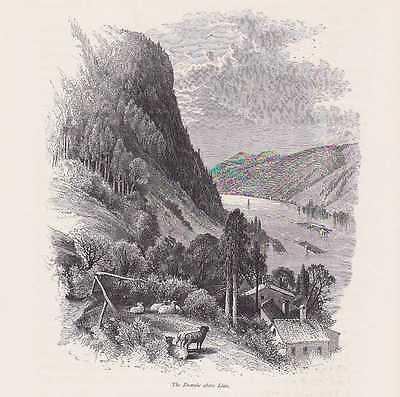 Die Donau bei Linz Flösser HOLZSTICH um 1880 Oberösterreich