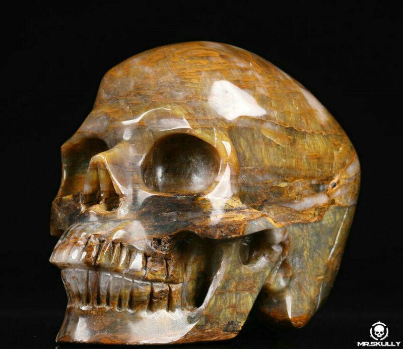 "Huge 5.0"" New Pietersite Carved Crystal Skull, Realistic, Crystal Healing"