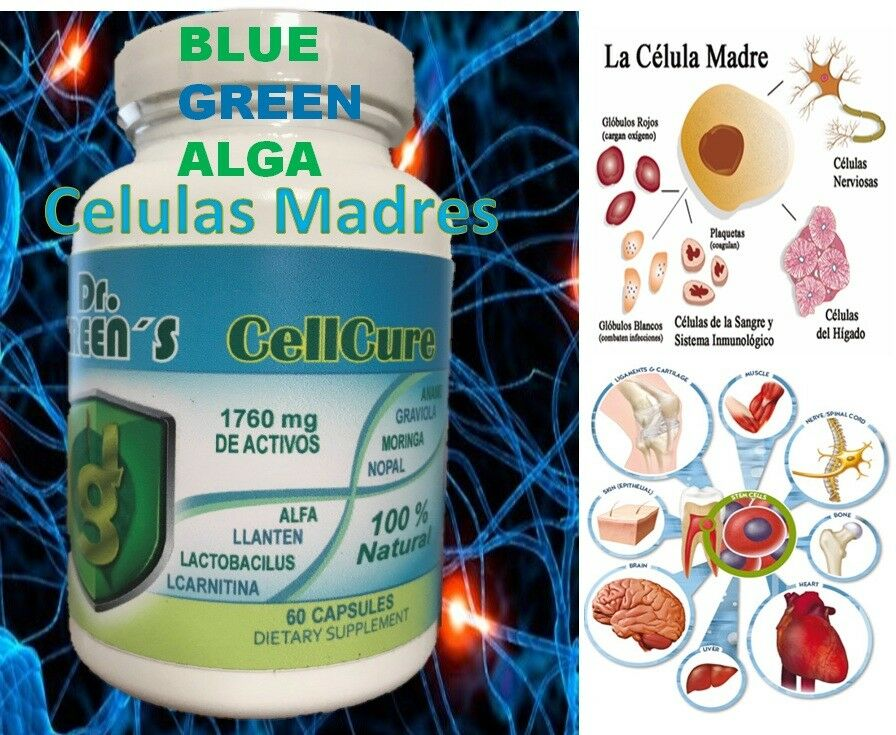 CoralCell Celula Madre Stem Cell coral cell madre cell PLUS CELLs stem alive bio 2