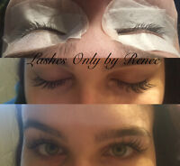 Butterfly lashes and HDI Brows