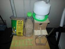 $40 Cheap Family Budgie with Lots of Freebies Westmead Parramatta Area Preview