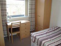En suite bedroom 5 min walk from Uni of Nottm main campus and QMC