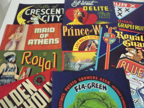 "12 Different Vintage  Florida  Crate Labels..9"" x 9"""