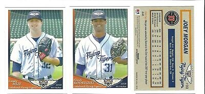 2019 LAKELAND FLYING TIGERS TEAM SET COMPLETE HIGH A DETROIT (Tigers Circle)