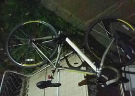 Carrera sport bike