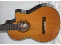 Yamaha CGX171CCA semi-classical Guitar