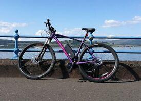 2018 Specialized Rockhopper Expert 29er BBSHD 1000W E-bike