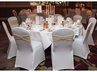 50 White Lycra Chair Covers + 50 Champagne Lycra Bow's with Buckle £100 ONO