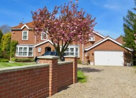 Stunning 4 Bed house with swimming pool, 3/4 acre of land, not overlooked