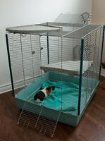 Ferret , rat, chinchila, degu cage (Pointe Claire)