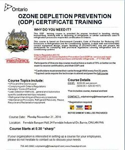What Are Some Solutions to Prevent Depletion of the Ozone Layer?