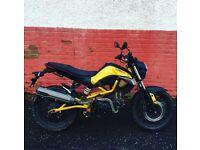 125cc Kymco K Pipe