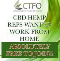 The CBD OIL Industry is BOOMING!!