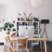Content Writing Freelancer- Avail.
