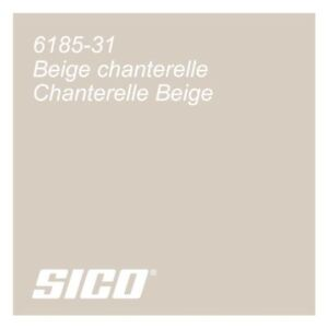Tinted EggShell Sico 2in1 Paint