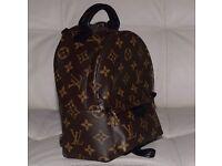 Louis Vuitton Palm Springs Bag